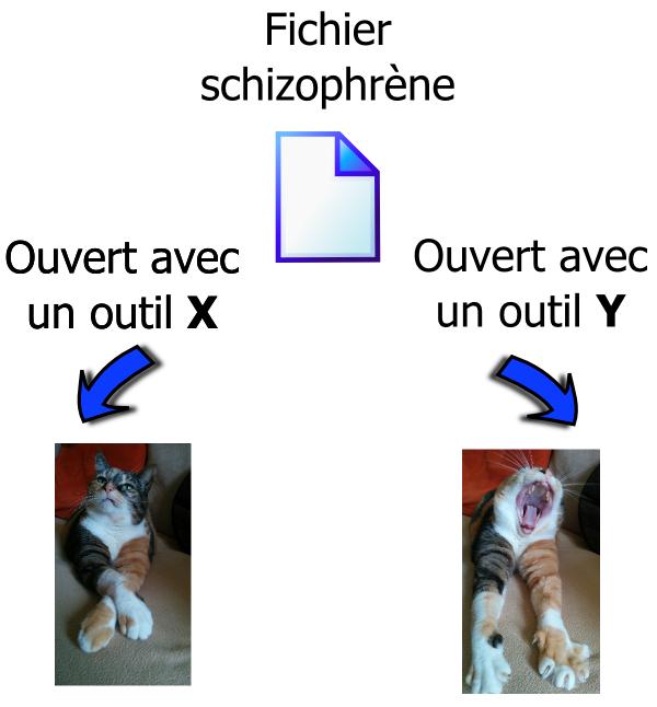 Fichier Schizonphrène
