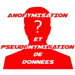 NoLimitSecu - Anonymisation de donnees - 256